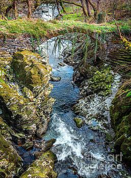 Adrian Evans - Roman Bridge