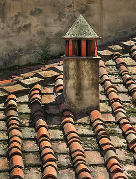 Roof Tiles in Florence Italy by Dave Mills