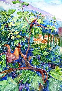 Rooster in a Fig Tree, Tuscany   by Trudi Doyle