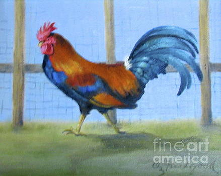 Rooster on the run by Oz Freedgood