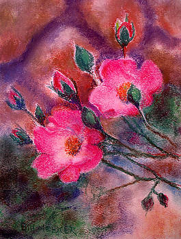 Rosa Chuckles Duo by Bill Meeker