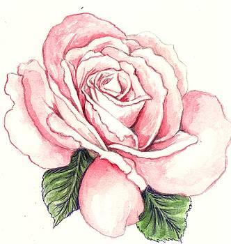 Rose 1 by Morgan Fitzsimons