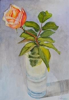 Rose in a glass vase by Dai Wynn