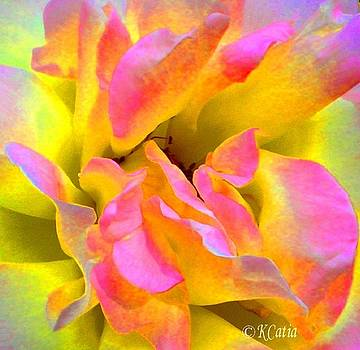 Rose Intense by Katia Creole Art