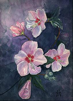 Rose of Sharon by Katherine Miller