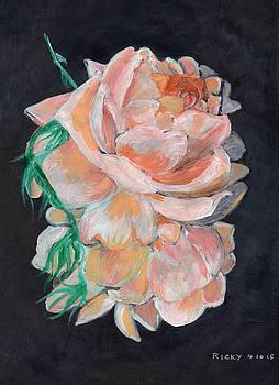Rosedrops by Veronica Rickard