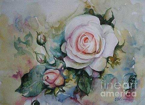 Roses by Elena Oleniuc