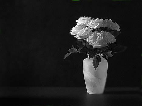 Roses on Black by Mark Wagoner