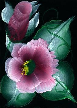 Roses On Black by Valerie Vanorden