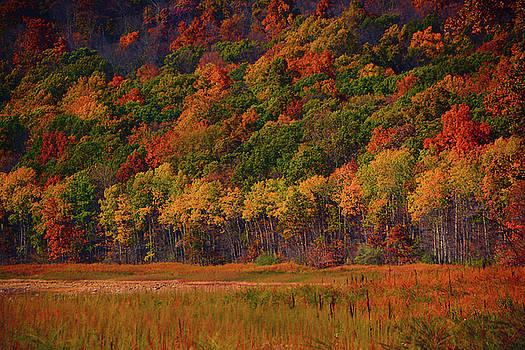 Raymond Salani III - Round Valley State Park 2