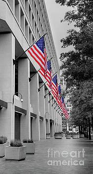 Row of Flags by E B Schmidt