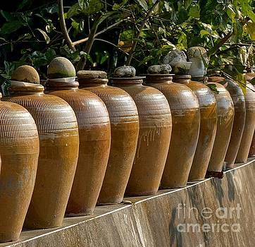 Row of Pickling Jars by Yali Shi