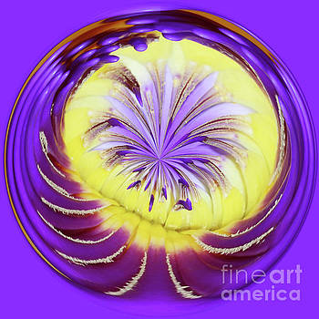 Royal Purple Water Lily Orb #2 by Judy Whitton