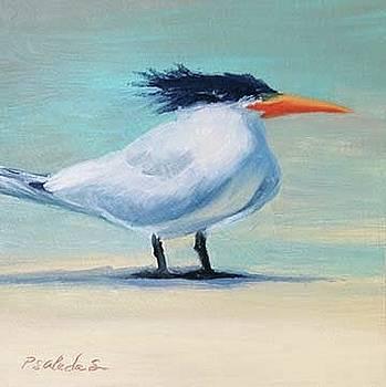 Royal Tern 1 by Sheila Psaledas