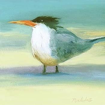 Royal Tern 3 by Sheila Psaledas