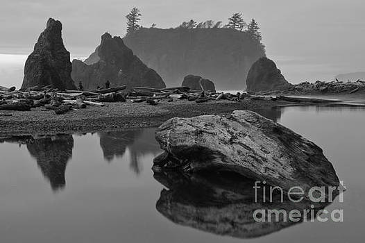Ruby Beach Stormy Silhouettes - Black And White by Adam Jewell