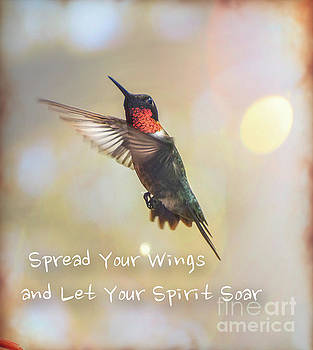 Ruby Red Hummingbird Soaring  by Peggy Franz