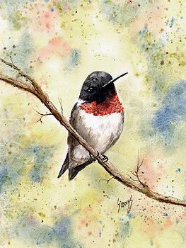 Ruby Throated Hummingbird by Sam Sidders