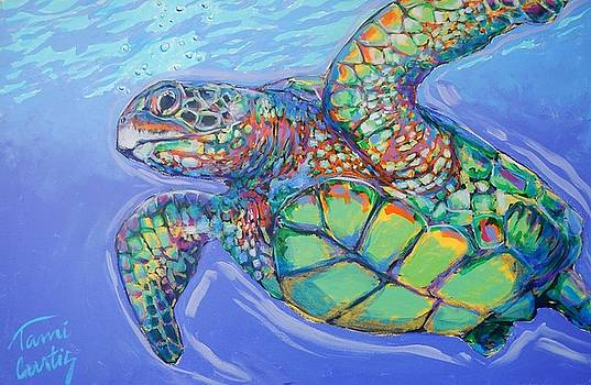 Rufus the Sea Turtle by Tami Curtis