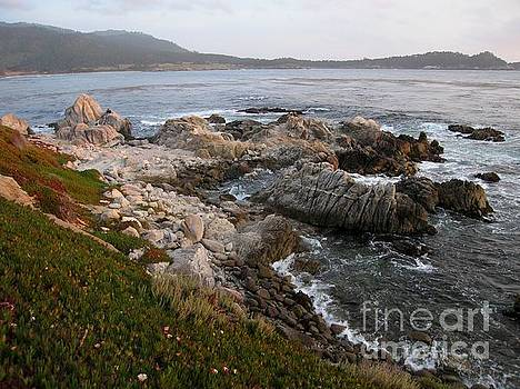 Rugged Carmel Point by James B Toy
