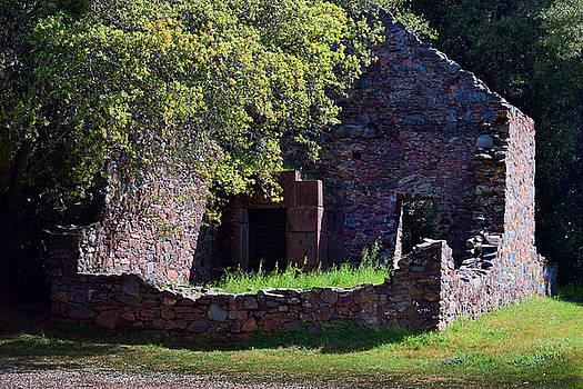 Frank Wilson - Ruins of the Cherokee Gold Assayers Office