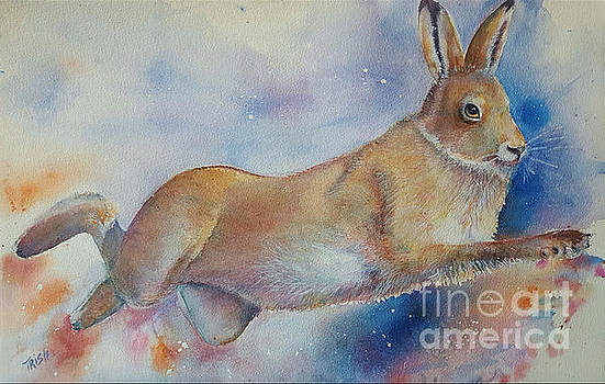 Running Hare by Patricia Pushaw
