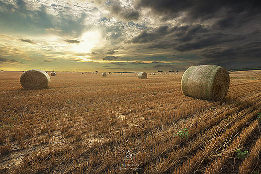 Runs Out Of Rain by Aaron J Groen