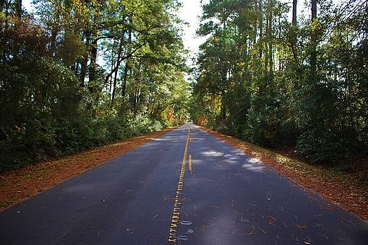 Rural Road by Cynthia Guinn