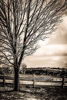 Rural Waterloo by Karl Anderson