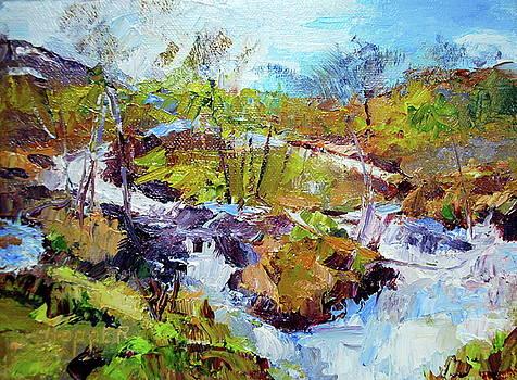 Rushing Waterfall by Carol Hopper