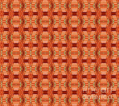 Rust Plaid 2 by Diana Chason