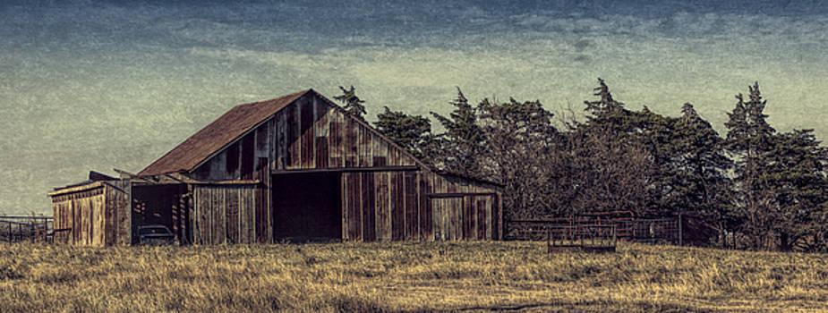 Rustic Barn by Jonas Wingfield