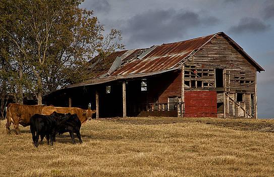 Rustic Barn by Katherine Worley