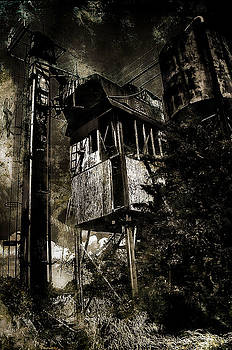 Rustic Doom by Gulf Island Photography and Images