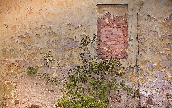 Rustic Farmhouse Wall by Debbie Karnes