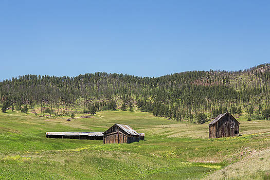 Rustic Hills by Penny Meyers