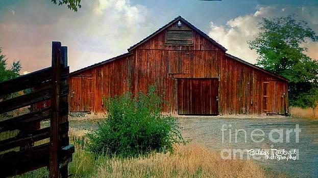 Rustic Ol Red Barn by Bobbee Rickard