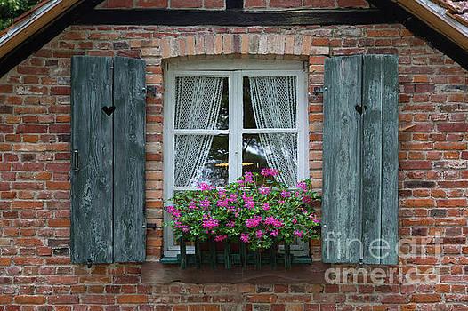 Rustic Window and Red Bricks Wall by Yair Karelic
