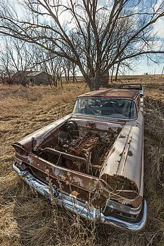 Rusty by Aaron J Groen