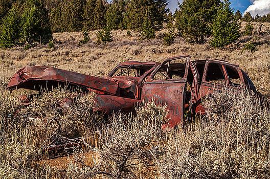 Rusty Automobile by Sue Smith
