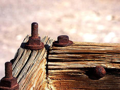 Rusty Bolts by Marcia Socolik