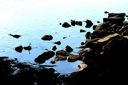 Rver Rocks by Jeffrey Platt