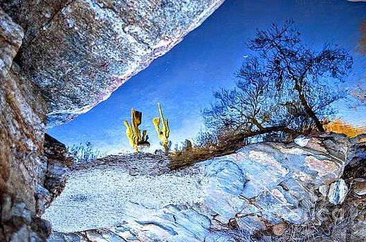 Sabino Canyon Reflection in Pool by Rincon Road Photography By Ben Petersen