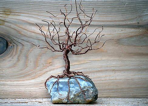 Sacred Oak by Gwendolyn Frazier