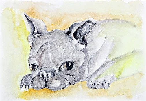 Sad lonely pet by Aleksandr Volkov