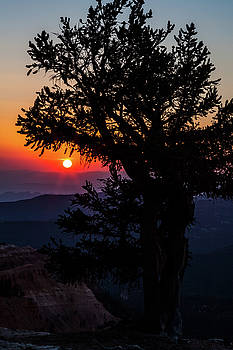 Saddle Fire Sunset by James Marvin Phelps