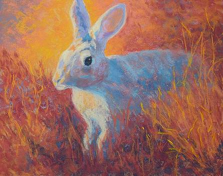 Sage Hare by Nancy Jolley