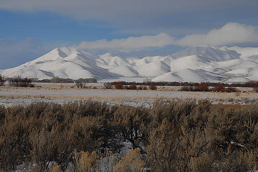 Sagebrush and snow by Rich Caperton