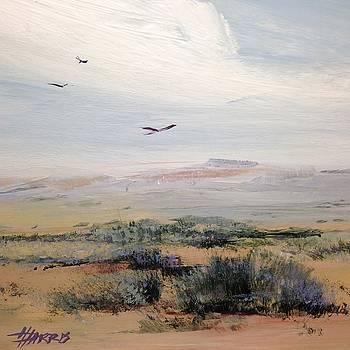 SageLand by Helen Harris