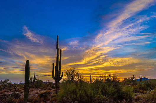 Saguao Cirrus Sunset by Casey Stanford